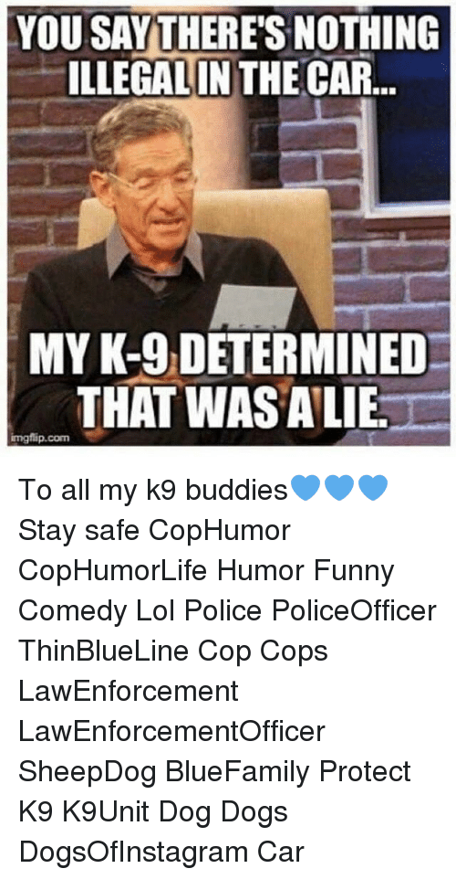 k-9: YOU SAY THERES NOTHING  ILLEGAL IN THE CAR  ILLEGALIN THE  MY K-9 DETERMINED  THAT WASALIE  mgflip.com  imgflip.com To all my k9 buddies💙💙💙 Stay safe CopHumor CopHumorLife Humor Funny Comedy Lol Police PoliceOfficer ThinBlueLine Cop Cops LawEnforcement LawEnforcementOfficer SheepDog BlueFamily Protect K9 K9Unit Dog Dogs DogsOfInstagram Car