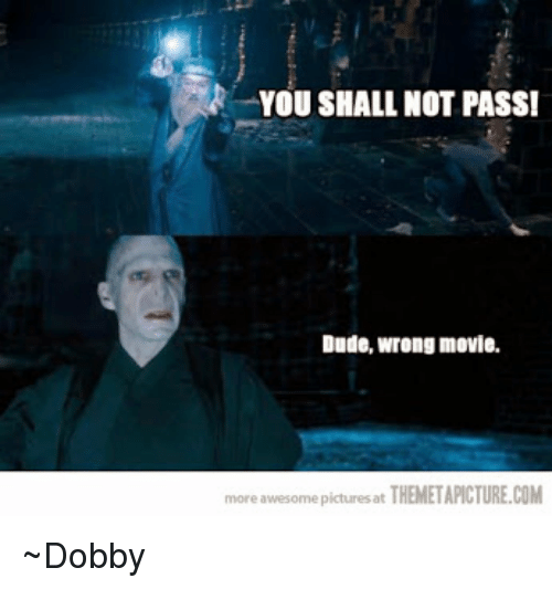 Themetapictures: YOU SHALL NOT PASS!  Dude, wrong movie.  more awesome pictures at  THEMETAPICTURE.COM ~Dobby