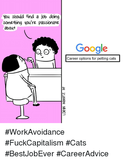 Petting Cat: you should find a job doing  something you're passionate  about  Google  Career options for petting cats #WorkAvoidance #FuckCapitalism #Cats #BestJobEver #CareerAdvice