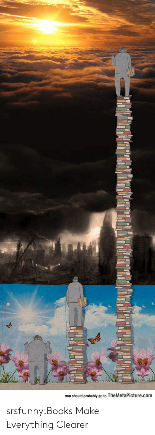 Books, Tumblr, and Blog: you should probably go to TheMetaPicture.com srsfunny:Books Make Everything Clearer