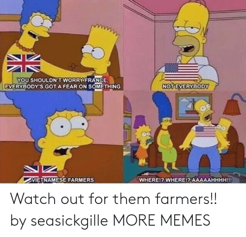 Dank, Memes, and Target: YOU SHOULDN'T WORRY FRANCE  EVERYBODY'S GOTA FEAR ON SOMETHING  VIETNAMESE FARMERS  WHEREl? WHERE!? AAAAAHHHHIII Watch out for them farmers!! by seasickgille MORE MEMES