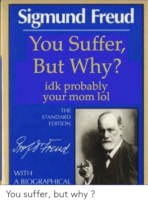 You Suffer: You suffer, but why ?