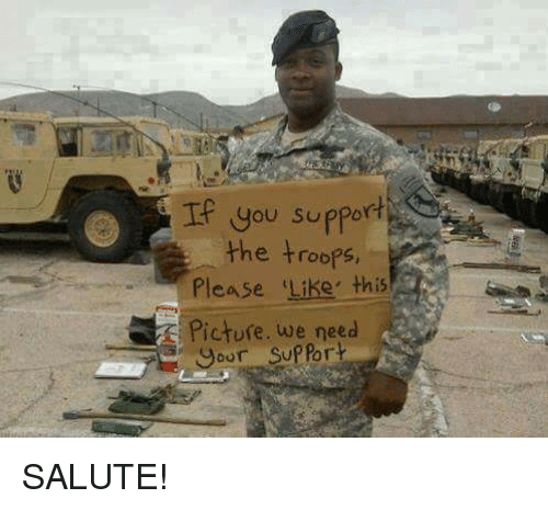 the troop: you support  the troops  Please Like, this  E Picture, we need  support SALUTE!