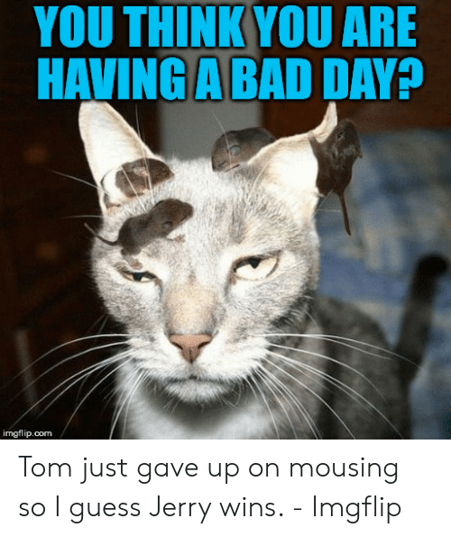 Jerry The Mouse: YOU THINK YOU ARE  HAVING A BAD DAY?  imgflip.com Tom just gave up on mousing so I guess Jerry wins. - Imgflip