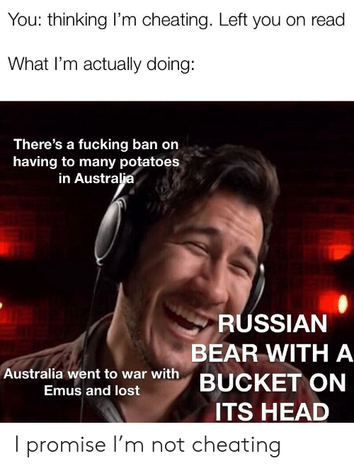 Cheating, Head, and Lost: You: thinking I'm cheating. Left you on read  What I'm actually doing:  There's a fucking ban on  having to many potatoes  in Australia  RUSSIAN  BEAR WITHA  Australia went to war with BUCKET ON  Emus and lost  ITS HEAD I promise I'm not cheating