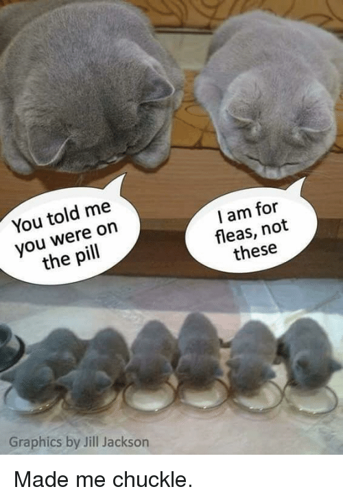 Jill: You told me  you were on  the pill  I am for  fleas, not  these  Graphics by Jill Jackson Made me chuckle.