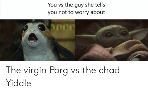 She Tells: You vs the guy she tells  you not to worry about The virgin Porg vs the chad Yiddle