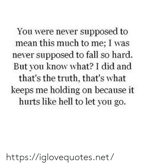 Fall, Mean, and Hell: You were never supposed to  mean this much to me; I was  never supposed to fall so hard.  But you know what? I did and  that's the truth, that's what  keeps me holding on because it  hurts like hell to let you go. https://iglovequotes.net/