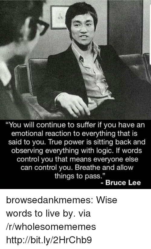 """Wise Words: """"You will continue to suffer if you have an  emotional reaction to everything that is  said to you. True power is sitting back and  observing everything with logic. If words  control you that means everyone else  can control you. Breathe and allow  things to pass.""""  -Bruce Lee browsedankmemes:  Wise words to live by. via /r/wholesomememes http://bit.ly/2HrChb9"""