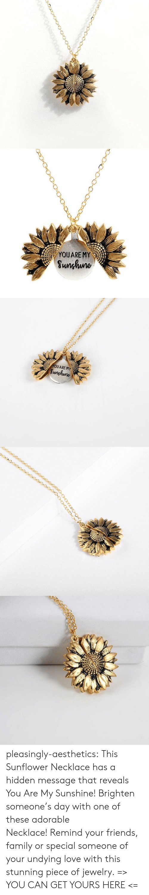 Family, Friends, and Love: YOUARE MY  Sunhuno   YOUARE MY  Sunghune pleasingly-aesthetics: This Sunflower Necklace has a hidden message that reveals You Are My Sunshine! Brighten someone's day with one of these adorable Necklace! Remind your friends, family or special someone of your undying love with this stunning piece of jewelry. => YOU CAN GET YOURS HERE <=