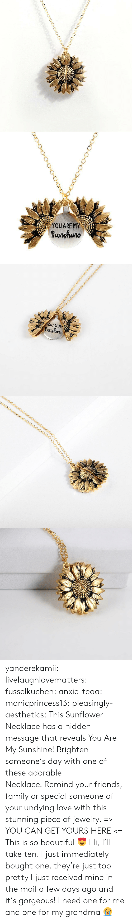 Beautiful, Family, and Friends: YOUARE MY  Sunhuno   YOUARE MY  Sunghune yanderekamii:  livelaughlovematters:  fusselkuchen: anxie-teaa:   manicprincess13:   pleasingly-aesthetics:  This Sunflower Necklace has a hidden message that reveals You Are My Sunshine! Brighten someone's day with one of these adorable Necklace! Remind your friends, family or special someone of your undying love with this stunning piece of jewelry. => YOU CAN GET YOURS HERE <=   This is so beautiful 😍    Hi, I'll take ten.    I just immediately bought one. they're just too pretty   I just received mine in the mail a few days ago and it's gorgeous!  I need one for me and one for my grandma 😭