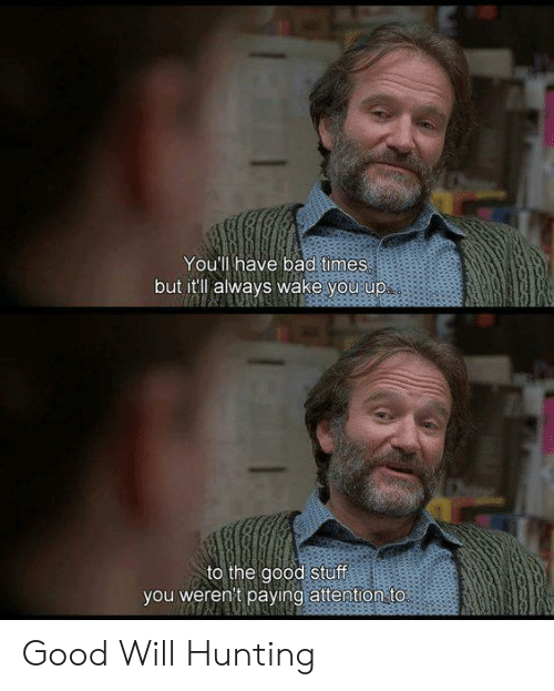Bad, Memes, and Hunting: You'll have bad times  but it'll always wake you up  to the good stuff  you weren't paying attention to. Good Will Hunting