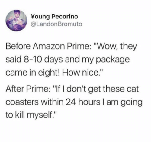 """Amazon, Amazon Prime, and Dank: Young Pecorino  @LandonBromuto  Before Amazon Prime: """"Wow, they  said 8-10 days and my package  came in eight! How nice.""""  After Prime: """"If I don't get these cat  coasters within 24 hours I am going  to kill myself."""""""
