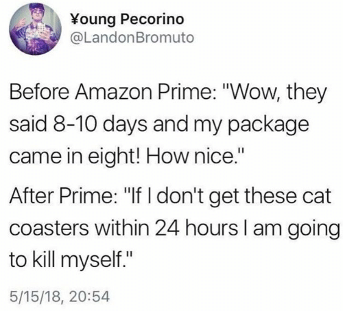 """Amazon, Amazon Prime, and Dank: Young Pecorino  @LandonBromuto  Before Amazon Prime: """"Wow, they  said 8-10 days and my package  came in eight! How nice.""""  After Prime: """"If I don't get these cat  coasters within 24 hours I am going  to kill myself.""""  5/15/18, 20:54"""