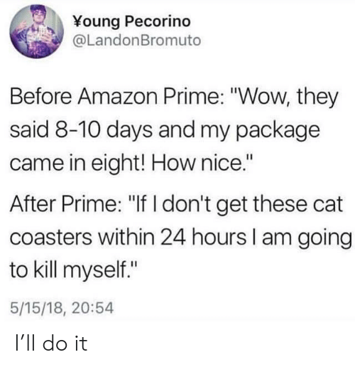 """Amazon, Amazon Prime, and Wow: Young Pecorino  @LandonBromuto  Before Amazon Prime: """"Wow, they  said 8-10 days and my package  came in eight! How nice.""""  After Prime: """"If I don't get these cat  coasters within 24 hours I am going  to kill myself""""  5/15/18, 20:54 I'll do it"""