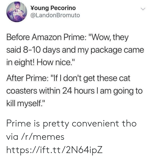 """Amazon, Amazon Prime, and Memes: Young Pecorino  @LandonBromuto  Before Amazon Prime: """"Wow, they  said 8-10 days and my package came  in eight! How nice.""""  After Prime: """"If I don't get these cat  coasters within 24 hours l am going to  kill myself."""" Prime is pretty convenient tho via /r/memes https://ift.tt/2N64ipZ"""