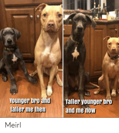 younger: YOunger bro and  faller me then  Taller younger bro  and me now Meirl