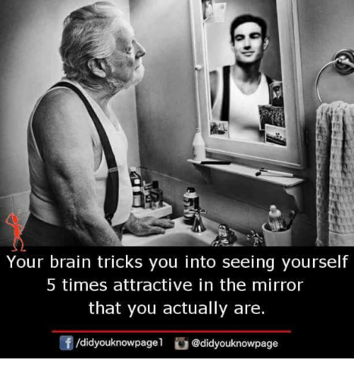 Memes, Brain, and Mirror: Your brain tricks you into seeing yourself  5 times attractive in the mirror  that you actually are.  f/didyouknowpagel@didyouknowpage