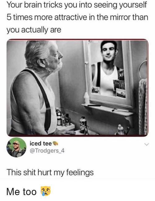 Memes, Shit, and Brain: Your brain tricks you into seeing yourself  5 times more attractive in the mirror than  you actually are  iced tee  @Trodgers_4  This shit hurt my feelings Me too 😿