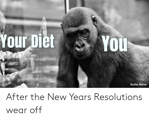 Gorilla Meme: Your Diet You  Gorilla Meme After the New Years Resolutions wear off
