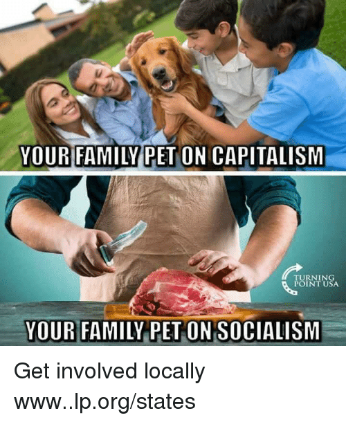 Family, Memes, and Capitalism: YOUR FAMILYPET ON CAPITALISM  TURNING  POINT USA  YOUR FAMILY PET ON SOCIALISIM Get involved locally www..lp.org/states