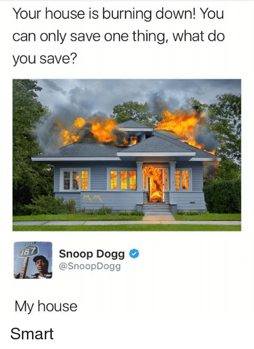 Snoop Dogge: Your house is burning down! You  can only save one thing, what do  you save?  187  Snoop Dogg  @SnoopDogg  My house Smart