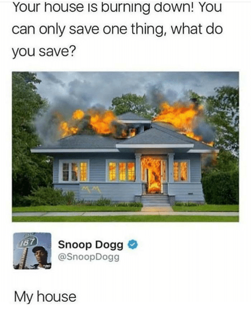 snoop dogg: Your house is burning down! You  can only save one thing, what do  you save?  Snoop Dogg >  @SnoopDogg  My house
