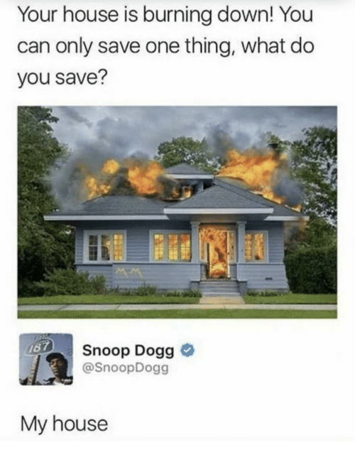 snoop dogg: Your house is burning down! You  can only save one thing, what do  you save?  Snoop Dogg o  @SnoopDogg  My house