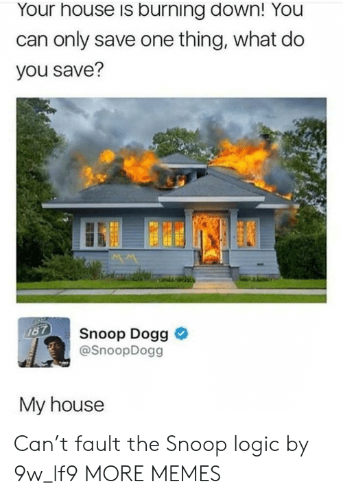 snoop dogg: Your house is burning down! You  can only save one thing, what do  you save?  Snoop Dogg >  @SnoopDogg  My house Can't fault the Snoop logic by 9w_lf9 MORE MEMES