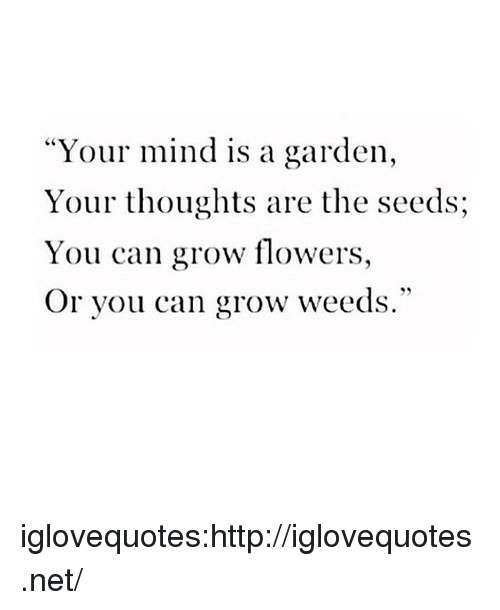 "weeds: ""Your mind is a garden,  Your thoughts are the seeds;  You can grow flowers,  Or you can grow weeds."" iglovequotes:http://iglovequotes.net/"