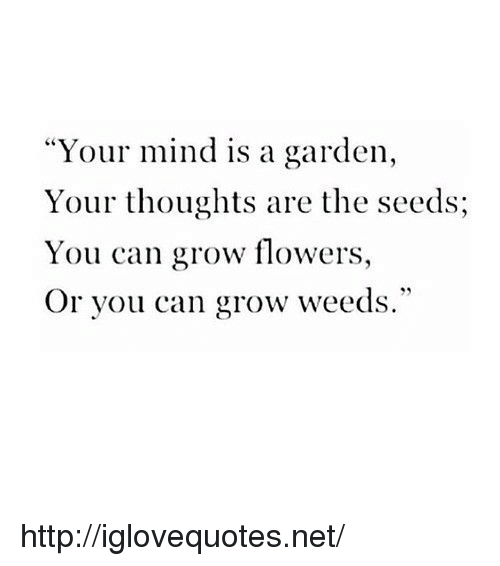 "weeds: ""Your mind is a garden,  Your thoughts are the seeds;  You can grow flowers,  Or you can grow weeds."" http://iglovequotes.net/"