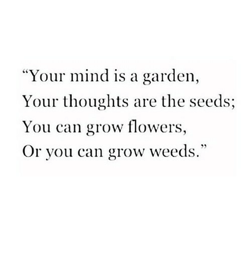 "weeds: ""Your mind is a garden,  Your thoughts are the seeds;  You can grow flowers,  Or you can grow weeds."""