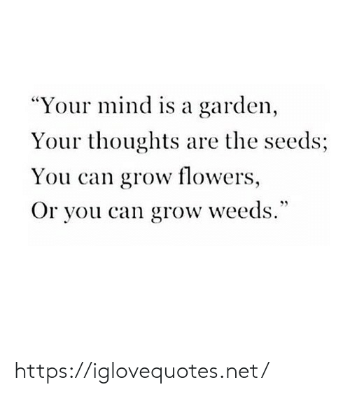 "weeds: ""Your mind is a garden,  Your thoughts are the seeds;  You can grow flowers,  Or you can grow weeds."" https://iglovequotes.net/"
