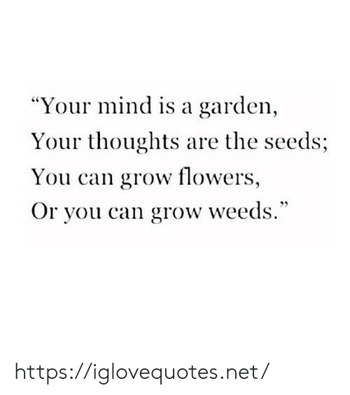 "weeds: ""Your mind is a garden  Your thoughts are the seeds;  You can grow flowers,  Or you can grow weeds."" https://iglovequotes.net/"