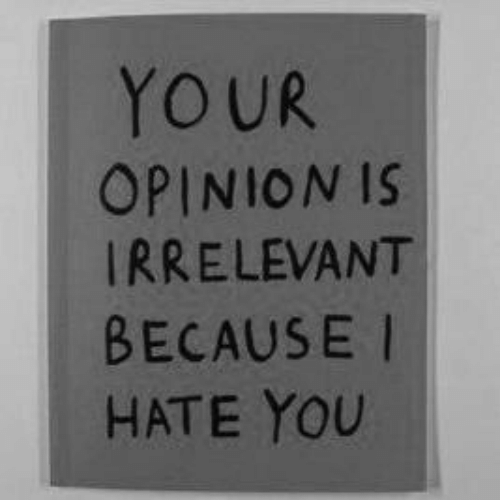 i hate you: YOUR  OPINION IS  IRRELEVANT  BECAUSE I  HATE YOU