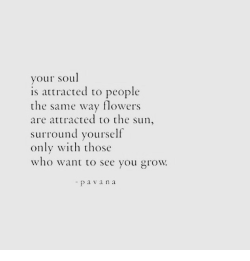 Wih: your soul  is attracted to people  the same way flowers  are attracted to the sun,  surround yourself  only wih those  who want to see you grow  - pavana