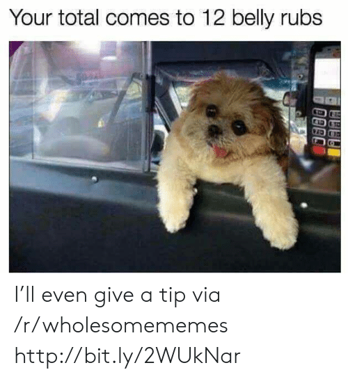 Rubs: Your total comes to 12 belly rubs I'll even give a tip via /r/wholesomememes http://bit.ly/2WUkNar