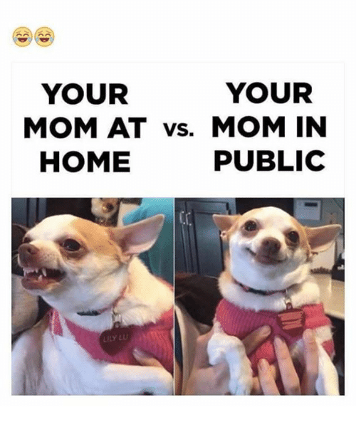 Memes, Home, and Mom: YOUR  YOUR  MOM AT vs. MOM IN  HOME  PUBLIC  LILY L