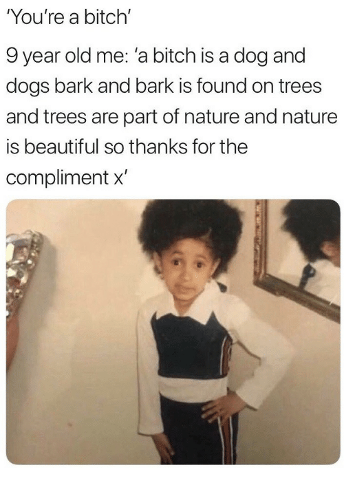 Nature Is Beautiful: You're a bitch'  9 year old me: 'a bitch is a dog and  dogs bark and bark is found on trees  and trees are part of nature and nature  is beautiful so thanks for the  compliment x'