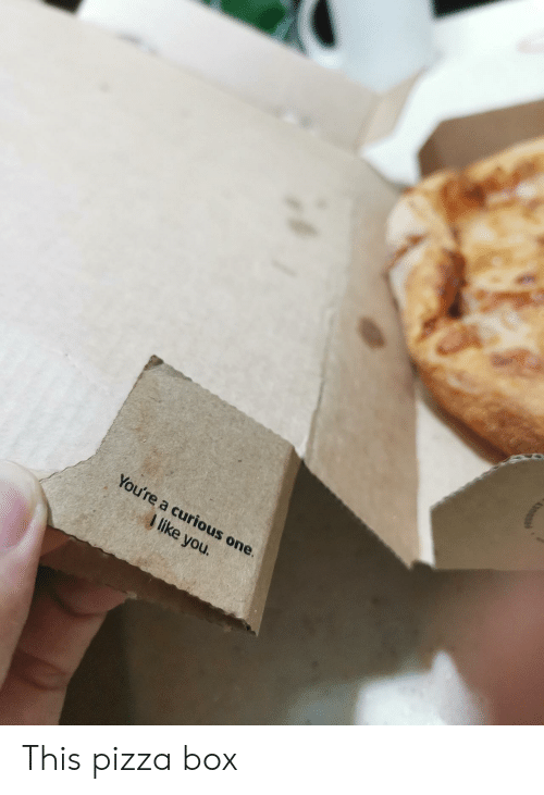 pizza box: You're a curious one.  I like you. This pizza box