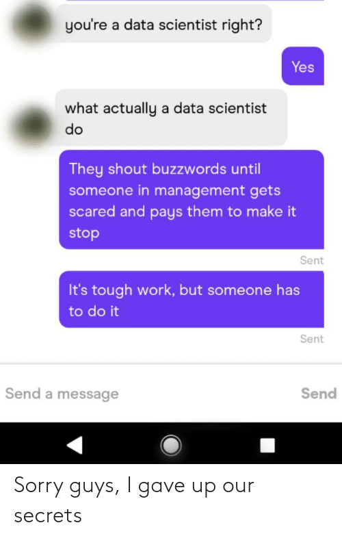 do it: you're a data scientist right?  Yes  what actually a data scientist  do  They shout buzzwords until  someone in management gets  scared and pays them to make it  stop  Sent  It's tough work, but someone has  to do it  Sent  Send a message  Send Sorry guys, I gave up our secrets