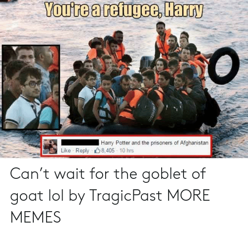 Dank, Harry Potter, and Lol: You're a refugee, Harry  Harry Potter and the prisoners of Afghanistan  Like Reply 8,405 10 hrs Can't wait for the goblet of goat lol by TragicPast MORE MEMES