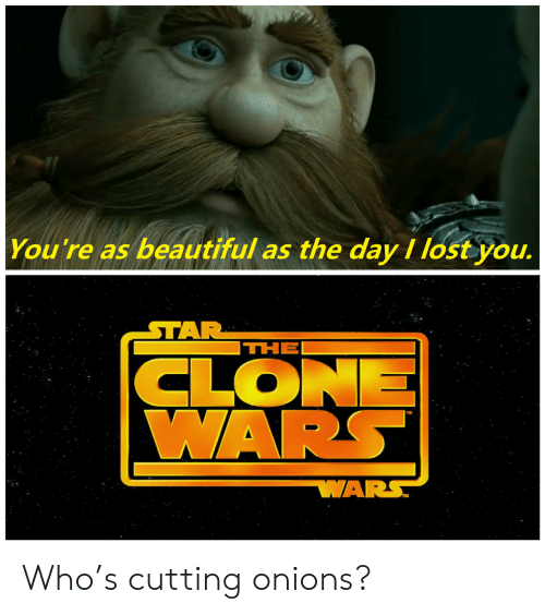 Beautiful, Lost, and Star: You're as beautiful as the day I lost you.  STAR  THE  CLONE  WARS  WARS Who's cutting onions?