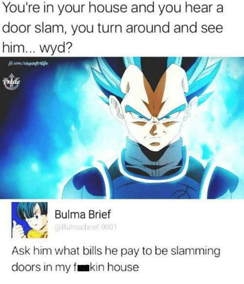 Bulma, Funny, and Wyd: You're in your house and you hear a  door slam, you turn around and see  him... wyd?  Bulma Brief  @Bulma brief 9001  Ask him what bills he pay to be slamming  doors in my fmkin house