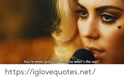 Love, Never, and Net: You're never gonna love me, so what's the use? https://iglovequotes.net/