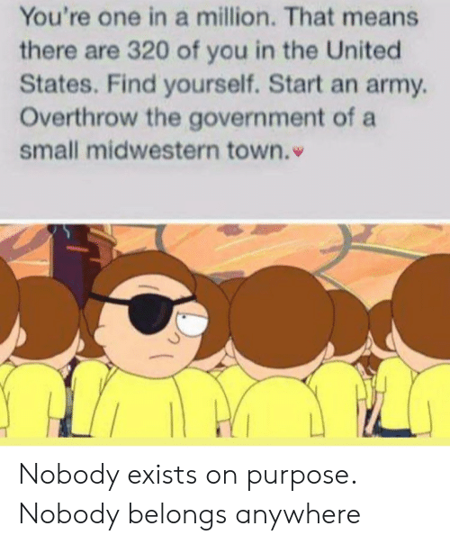 The United States: You're one in a million. That means  there are 320 of you in the United  States. Find yourself. Start an army  Overthrow the government of a  small midwestern town. Nobody exists on purpose. Nobody belongs anywhere