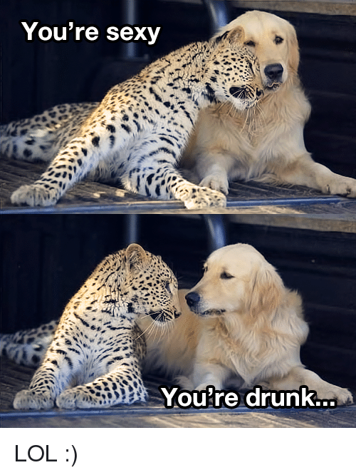 Youre Sexy: You're sexy  Youre drunk.. LOL :)