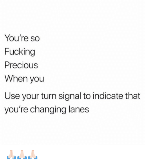 Fucking, Funny, and Precious: You're so  Fucking  Precious  When you  Use your turn signal to indicate that  you're changing lanes 🙏🏻🙏🏻🙏🏻