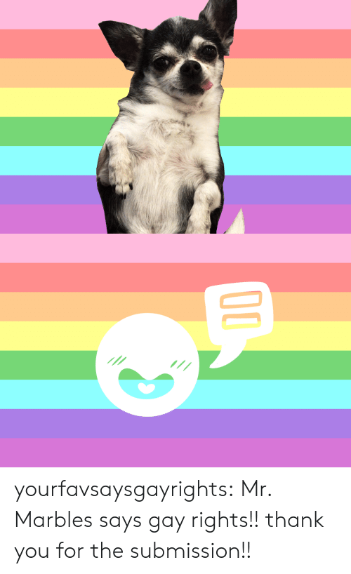 submission: yourfavsaysgayrights: Mr. Marbles says gay rights!! thank you for the submission!!