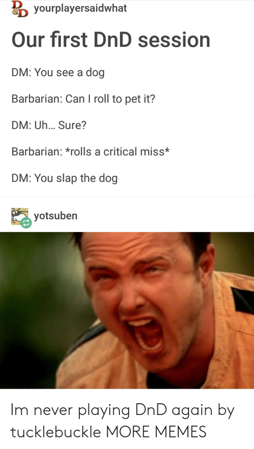 barbarian: yourplayersaidwhat  Our first DnD session  DM: You see a dog  Barbarian: Can I roll to pet it?  DM: Uh... Sure?  Barbarian: *rolls a critical miss*  DM: You slap the dog  yotsuben  Oe Im never playing DnD again by tucklebuckle MORE MEMES